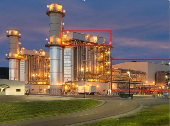 Alberta plant