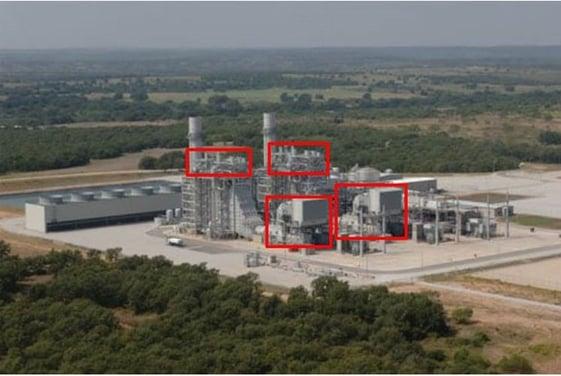 Texas plant